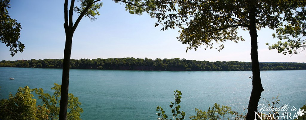 Niagara River Panoramic