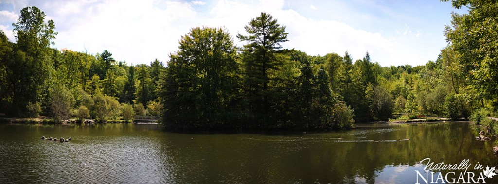 St Johns Conservation Panoramic