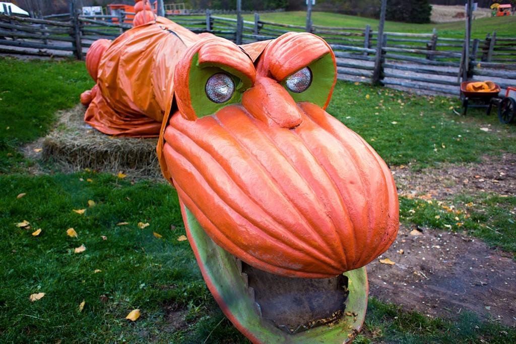 Pumpkin-o-Saurus Rex