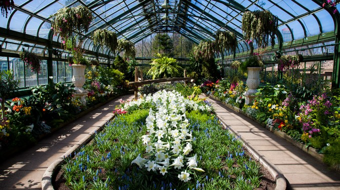 Floral-Showhouse-(Spring)
