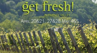 Get Fresh in the Valley