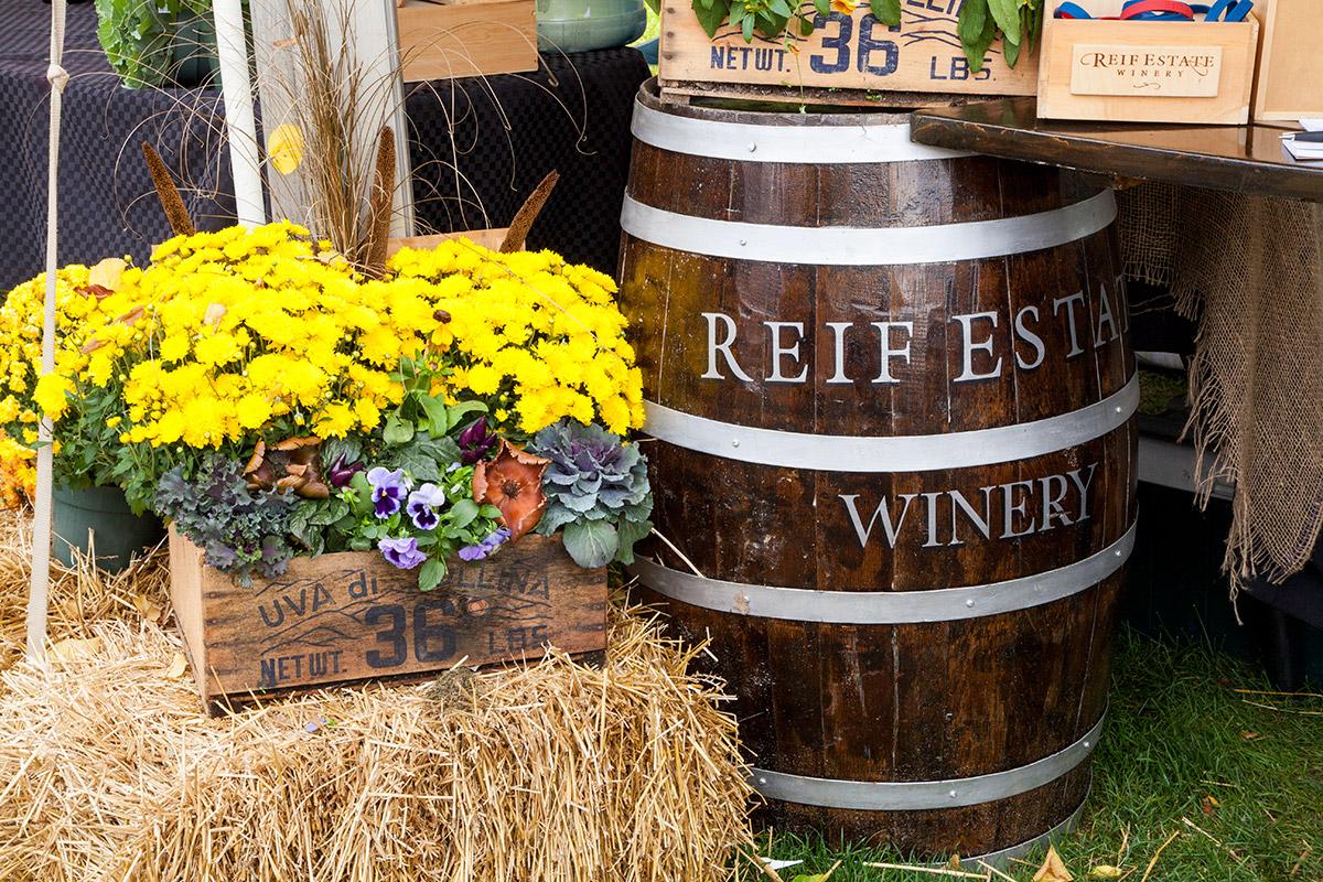Wine-Fest-2013-(3)
