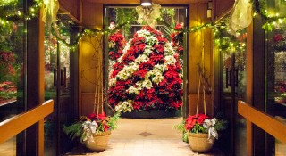 Floral-Showhouse-Christmas-Display
