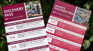 Discovery-Passes